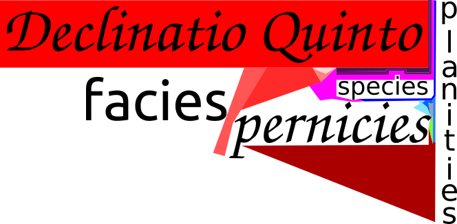 Declinatio Quinto